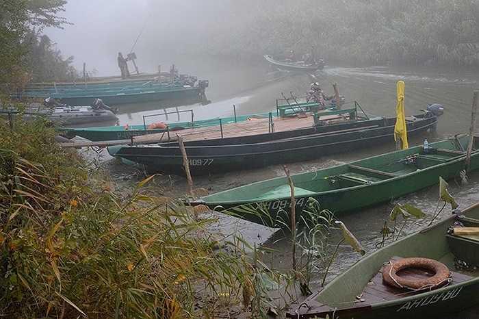 Các thuyền của ngư dân tập trung trong mùa câu cá