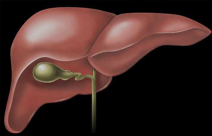 Người bị bệnh gan không nên ăn tỏi: Các chuyên gia cho rằng một số thành phần trong tỏi còn có thể gây kích thích dạ dày và ruột, ức chế quá trình tiết dịch của dạ dày. Thành phần dễ bay hơi trong tỏi làm giảm tế bào hồng cầu và hemoglobin trong máu, dẫn đến tình trạng thiếu máu ở bệnh nhân viêm gan.