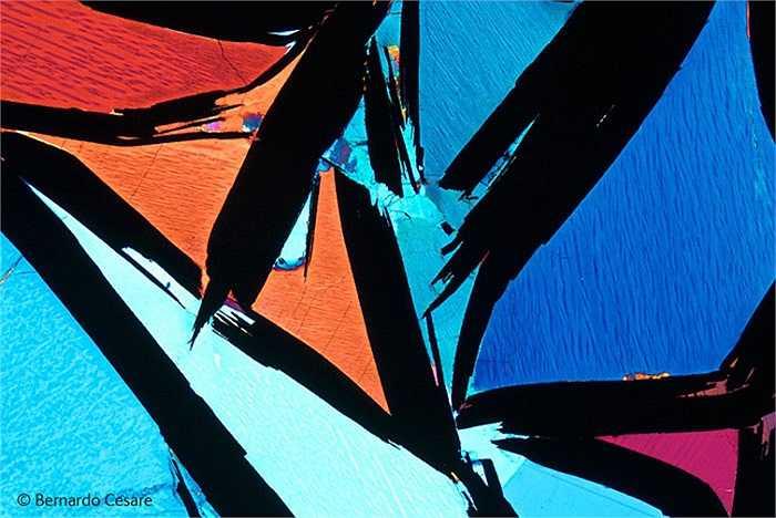 'Kaleidoscope': Thật khó hình dung bức ảnh chụp vật gì và đa số chúng ta chưa từng nhìn thấy bao giờ. Nhiếp ảnh gai đã chụp tinh thể đá graphite bằng kính hiển vi quang hợc dưới con mắt nghệ thuật.