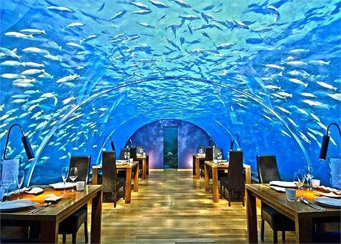 Nằm ở độ sâu gần 5 mét dưới mực nước biển trên đảo Maldives, được coi là nhà hàng dưới đáy biển đầu tiên trên thế giới. Nhà hàng chỉ có sức chứa 14 người và bạn có cơ hội tận hưởng bữa ăn sang trọng giữa chốn bồng lai tiên cảnh như trong mơ.