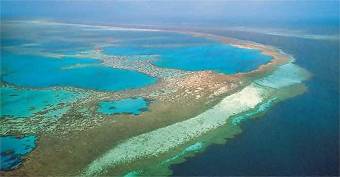Rạn san hô Great Barrier, ở Úc là cấu trúc khổng lồ duy nhất được xây dựng bởi sinh vật sống. Bao gồm 2.900 tảng đá ngầm riêng rẽ và 900 hòn đảo kéo dài khoảng 2600 km.