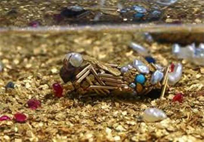 """Trong điều kiện tự nhiên, ấu trùng Bộ Cánh lông sử dụng vật liệu trong môi trường để xây tổ: mảnh gỗ, xương cá... Tuy nhiên, nghệ sĩ người Pháp Hubert Duprat đã cung cấp cho chúng nguyên liệu từ ngọc trai, vụn vàng, đá quí để tạo ra lớp """"áo choàng"""" vô cùng lộng lẫy."""