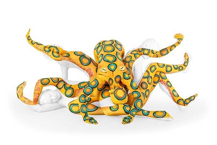 Một con bạch tuộc sặc sỡ