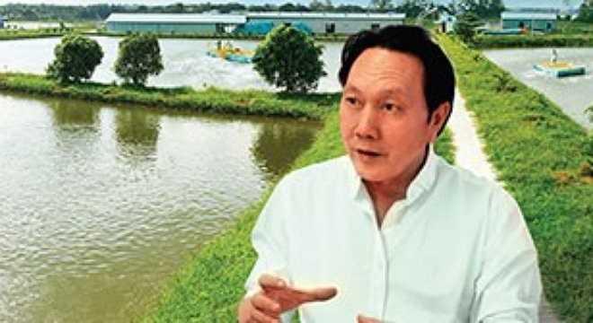 Cho tới nay tin đồn đã bị xóa bỏ được 2 năm nhưng Dương Ngọc Minh vẫn được báo chí nhắc tới như một người tình tin đồn của Mỹ Tâm.