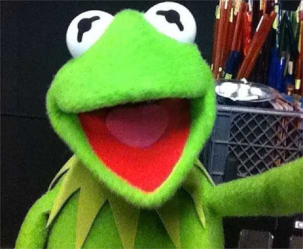 Nhân vật dành cho thiếu nhi nổi tiếng thế giới - Kermit the Frog đã có màn chụp ảnh selfie khiến người xem bất ngờ và không thể nhịn cười.