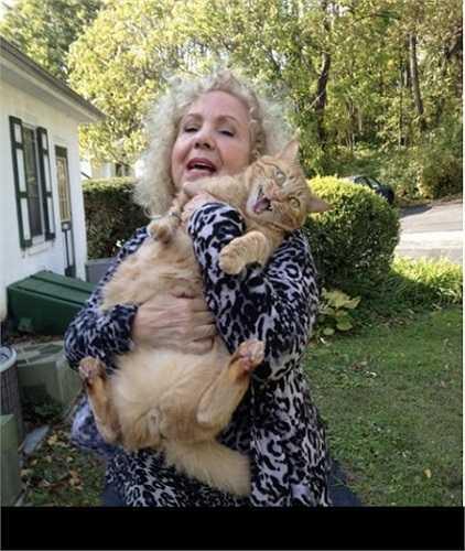 Tự sướng với mèo là một trào lưu bình thường nhưng ít có chú mèo nào có được bộ mặt biểu cảm như chú mèo này.