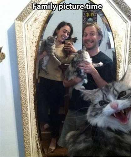 Tự sướng với mèo tập 2: Trong cuộc đoàn tụ gia đình có một kẻ phá đám.