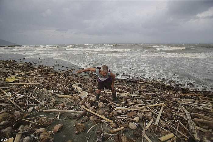 Những thanh gỗ bị sóng đánh vào bờ biển Philippines trước cơn bão