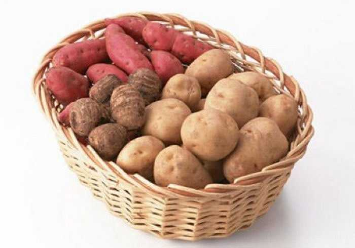 Các chuyên gia chỉ ra rằng, các loại củ chứa nhiều tinh bột như khoai tây, khoai lang, củ từ, khoai môn đều không được ăn sống. Những món này nếu ăn sống không chỉ khiến những chất dinh dưỡng như tinh bột trong đó không dễ được cơ thể hấp thụ mà còn sinh ra cảm giác khó chịu như chướng bụng.