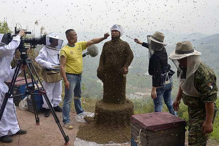 Người đàn ông mặc bộ quần áo ong ở Trung Quốc ngày 9/4/2014