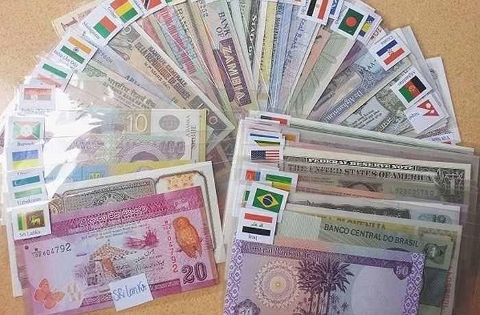 Bộ tờ tiền 100 tờ của 50 quốc gia cũng là sản phẩm được nhiều người quan tâm. Mỗi bộ tờ tiền này có đầy đủ hình thù các con vật trong các cung, giá bán trên thị trường khoảng 1,5 triệu đồng.