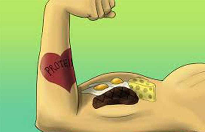 Tăng cường protein: Thịt gà là thực phẩm đáng để các bà nội trợ lựa chọn cho một bữa ăn dinh dưỡng. Chúng chứa nhiều loại protein khác nhau như phức hợp axit amin phong phú tốt cho sự tăng trưởng của cơ thể.