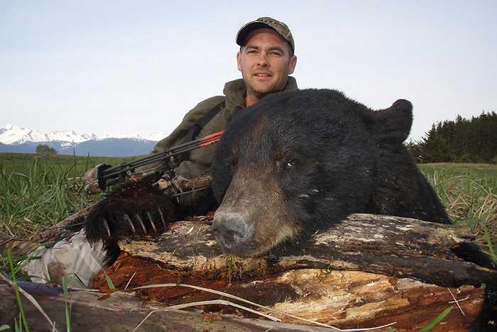 Loài gấu cực kỳ hung dữ này có sở thích ăn tạp và thường hoạt động về ban đêm. Thức ăn hàng ngày của gấu nâu là hoa quả chín, lá của các loài cây, có khi là những loài ngặm nhấm như chuột rừng, thỏ, sóc và cá hồi.