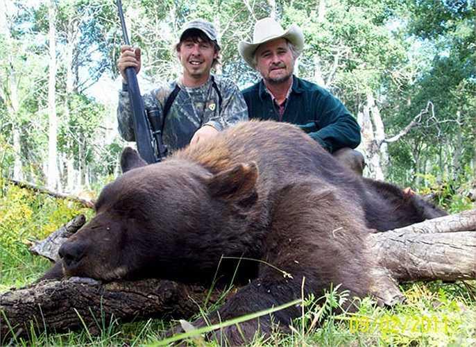 Tuy nhiên gấu nâu khổng lồ thích lẩn tránh trong những hang, hốc cây, góc khuất của rừng để tránh cái giá rét của mùa đông.