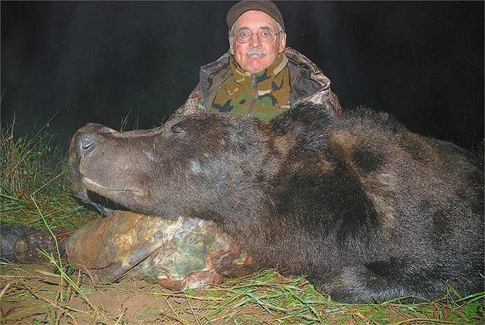 Mỗi năm gấu cái thường sinh sản từ 1 - 5 gấu con. Tuy là loài to lớn, song trọng lượng của những con non chỉ tầm 500g.