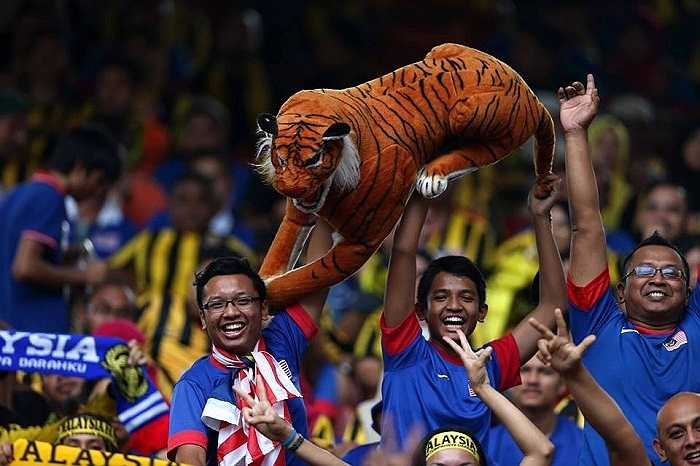 Những con hổ Đông Nam Á thật sự khiến tất cả ngỡ ngàng