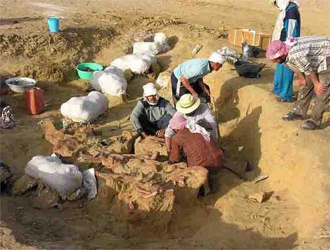 Các xác ướp ở nghĩa địa được bảo quản tự nhiên, bởi khí hậu và môi trường đất khô cằn. Hiện các nhà khoa học chưa đưa ra được nhận định nào về việc người xưa có sử dụng kỹ thuật ướp xác hay không.