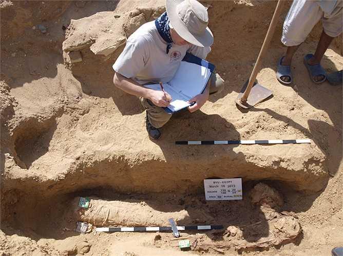 Hiện tại, các nhà khoa học đã khai quật được 1.700 xác ướp. Theo họ, sẽ phải mất đến 30 năm để tiếp tục khai quật, mới làm sáng tỏ được phần nào những bí ẩn của nghĩa địa khổng lồ này.