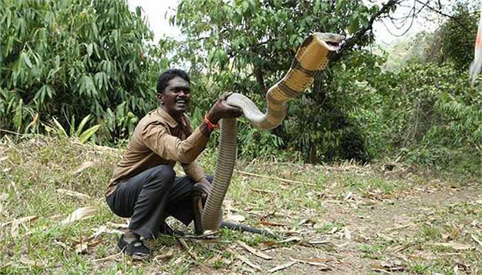 Người dân tại bang Kerala thường xuyên nhờ đến sự trợ giúp của anh khi họ gặp rắn ở trong khu dân cư, hay khi chúng lạc vào nhà của họ.