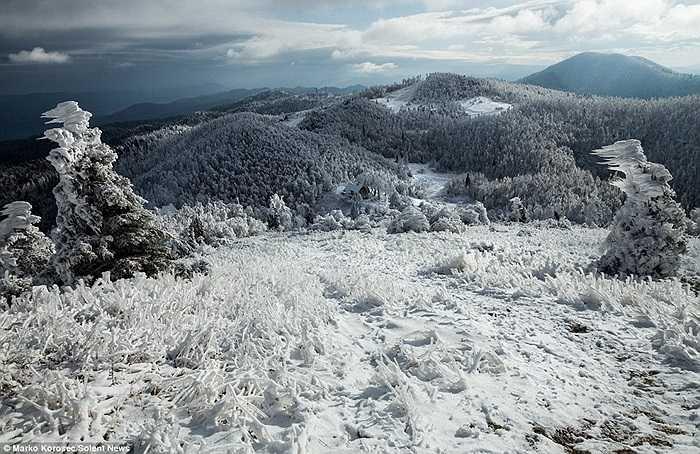 Cả một vùng núi rộng lớn chìm trong băng giá và tuyết