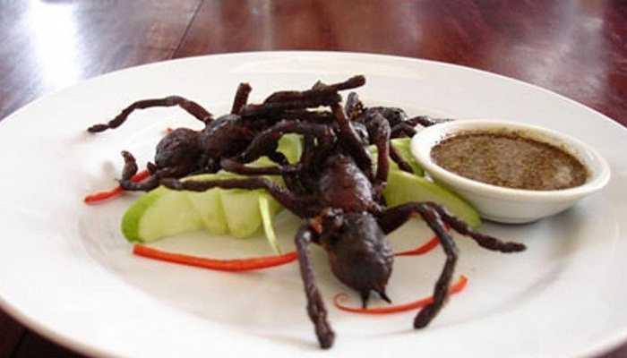 Các món ăn từ nhện Tarantulas - Campuchia  Người ta cho rằng, món ăn này xuất phát từ thực tế cuộc sống vô cùng thiếu thốn của người dần Campuchia từ những năm 1970 và họ phải chế biến loài nhện Tarantulas thành thức ăn cho mình. Mặc dù người ta đảm bảo có những nguyên liệu chế biến có thể trung hòa được nọc độc của loài nhện, tuy nhiên, không thể chắc chắn 100% là nguy hiểm sẽ không xảy ra với thực khách
