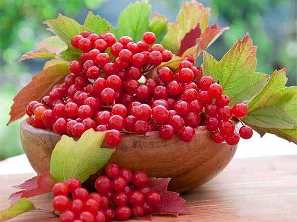 Quả mọng: Quả mâm xôi, quả việt quất và nam việt quất là một số loại trái cây có thể ngăn ngừa ung thư. Chúng chứa chất chống oxy hóa có tên là pterostilbene, giúp tiêu diệt các tế bào ung thư.