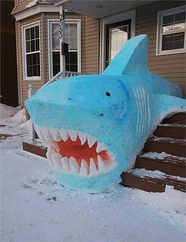 Cá mập đại dương ngay trên cạn