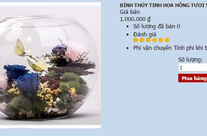 Bên cạnh hoa hồng mạ vàng viền cánh, năm nay, các loại hoa hồng 7 màu, hồng xanh vĩnh cửu... vẫn được bán khá nhiều. Mức giá cho các món quà này dao động từ 350.000 - 500.000 đồng.