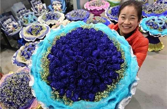 Hoa hồng xanh độc, lạ cũng là món quà đầy bất ngờ