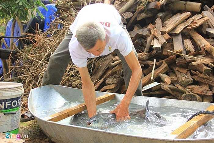 Bắt đầu từ tháng 12 âm lịch, cả làng Đại Hoàng xã Hòa Hậu, Lý Nhân, Hà Nam (vốn quen được gọi với tên làng Vũ Đại) đã bắt đầu kho cá để bán Tết. Theo ông Trần Bá  Sản, một nghệ nhân kho cá ở xóm 11, thì năm nay, lượng khách đặt làm cá kho đông gấp 2, 3 lần so với mọi năm, cả gia đình ông phải thức trắng đêm để làm cá.