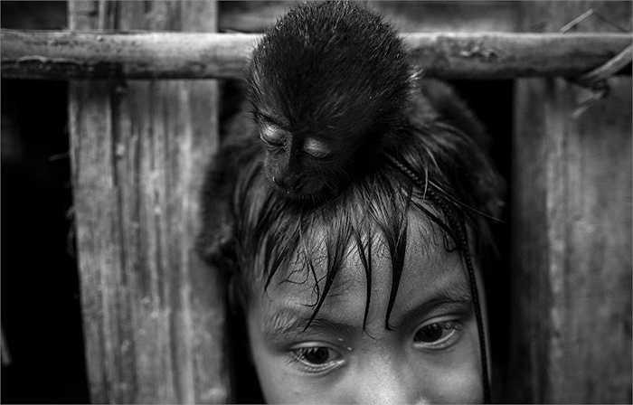 Bộ lạc Awa có khoảng 350 người giao tiếp với thế giới bên ngoài và khoảng 60 tới 100 người vẫn ẩn náu trong các cánh rừng, không chịu xuất hiện và tiếp xúc với người lạ.