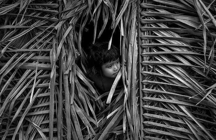 Cuộc sống của những đứa bé Awa hoang dã từ tấm bé.