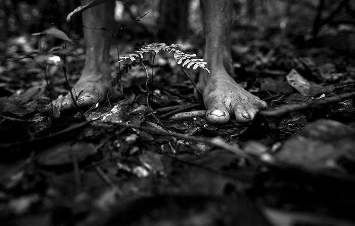 Bàn chân của một thợ săn Awa