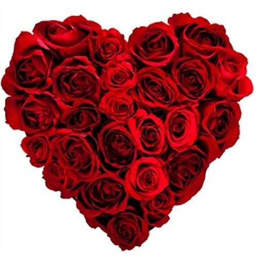 51% người mua hoa hồng đỏ vào Ngày lễ tình nhân để tặng cho nửa kia.