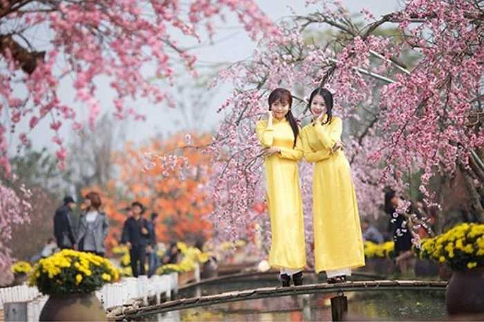 Ngoài hoa đào, các chủ vườn Nhật Tân cũng trang trí thêm nhiều khung cảnh đẹp mắt để phục vụ nhu cầu lưu lại khoảnh khắc đẹp của giới trẻ.
