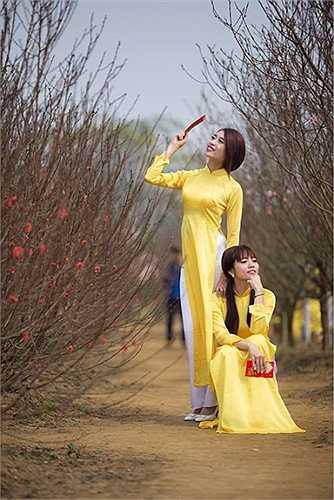 Không bỏ lỡ thời điểm đẹp nhất trong năm, giới trẻ Hà Nội nô nức rủ nhau đi chụp ảnh hoa đào.