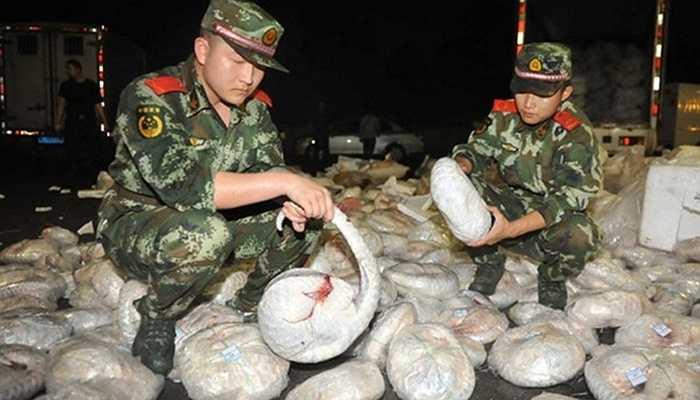 Năm 2014, lực lượng cảnh sát Trung Quốc đã bắt giữ một số lượng lớn các động vật hoang dã buôn bán trái phép tại đây. Trước đó, các nhà thống kê đã xác nhận có tới 8.000 con tê tê bị tịch thu từ những cuộc thanh tra như thế này trong năm 2013.