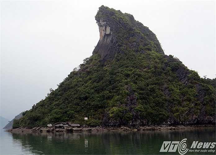 Đảo đá như một con sóng bạc đầu khổng lồ trước biển