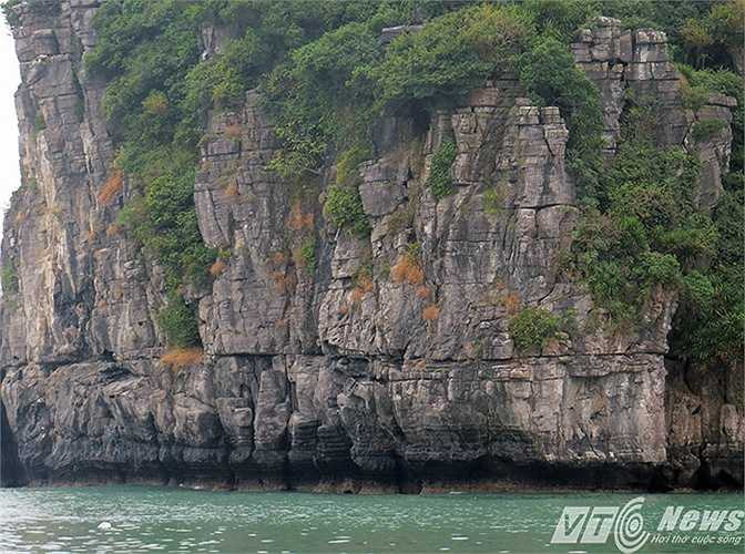 Sức sống mãnh liệt của những loài cây mọc trên núi đá vôi, in hình xuống mặt biển xanh biếc, lăn tăng gợn sóng.