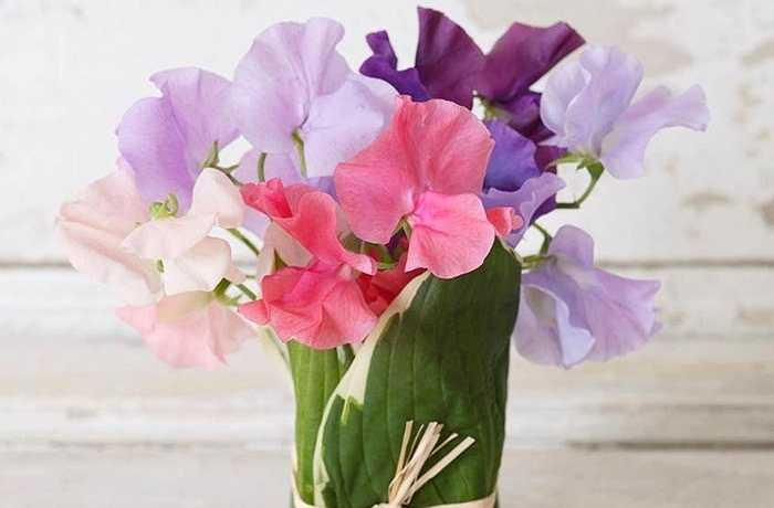 Bọc thêm vài lá xanh bên ngoài bình hoa đơn giản ngay lập tức mang nét xuân vào nhà. Đơn giản, mộc mạc, hiệu quả.