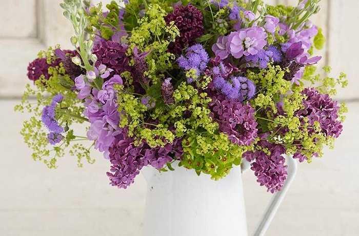 Cách trang trí phức tạp của những loài hoa mới hái này cho thấy sự xanh tươi, sự phong phú của thiên nhiên ở miền quê. Cây đinh tử hương đặc biệt đẹp khi nhét vào một chiếc bình đơn giản mặc dù sử dụng những gì bạn có trong khu vườn của bạn hoặc tìm trên thị trường.