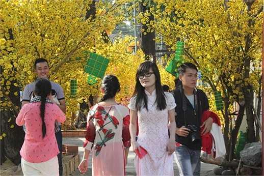 Đường phố Sài Gòn được khoác lên mình những chiếc áo vàng rực rỡ của hoa mai tạo thành những vườn hoa lý tưởng để các thiếu nữ đến chụp ảnh(Ảnh: Phạm Nguyễn)