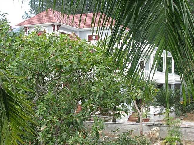 Năm 2009, gia đình ông Thạch được giao khoán 3ha đất rừng tại đây. Trong quá trình sử dụng, ông đã chuyển nhượng 1,5 ha cho gia đình ông Ngô Văn Quang - Giám đốc Công ty Vàng Phước Minh Quang sử dụng theo hợp đồng giao khoán. Tại khu đất được giao chuyển nhượng, ông Quang cũng xây dựng khu biệt thự hoành tráng.