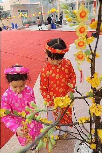 Góc hoa mai – hoa đào sẽ khiến các em thêm thích thú thể hiện sự khéo léo làm cành hoa mai, hoa đào trưng bày cho ngày Tết thêm tưng bừng