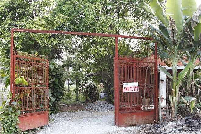 Trong những ngày giáp Tết, Ánh Tuyết tất bật chuẩn bị việc dời nhà từ quận trung tâm TP HCM về mảnh vườn của chị ở ngoại thành