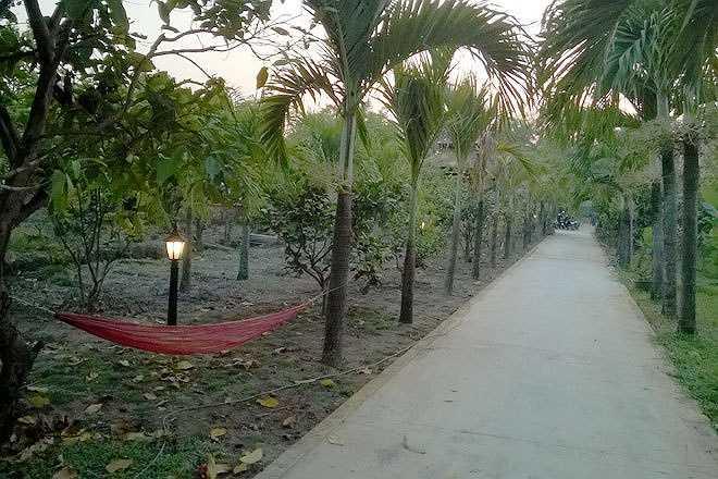 Từ cổng có lối đi dài dẫn vào khuôn viên bên trong. Hai bên lối đi được nữ chủ nhân trồng hàng cau thẳng tắp. Bao bọc xung quanh là nhiều loại cây ăn trái: bưởi, xoài, mít, ổi, mận, khế...