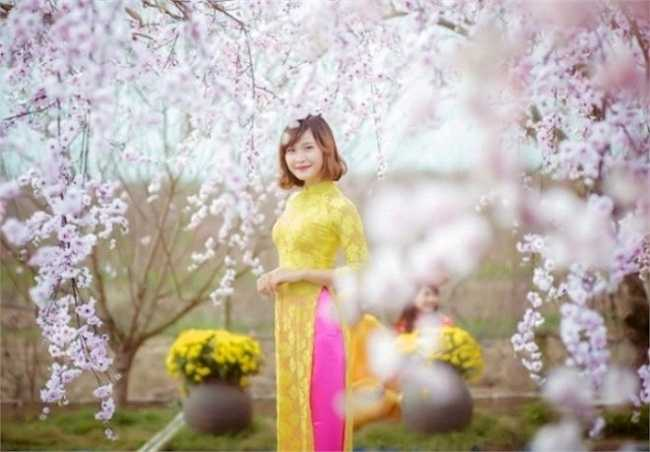 Minh Thúy đẹp rạng ngời trong vườn đào Nhật Tân.