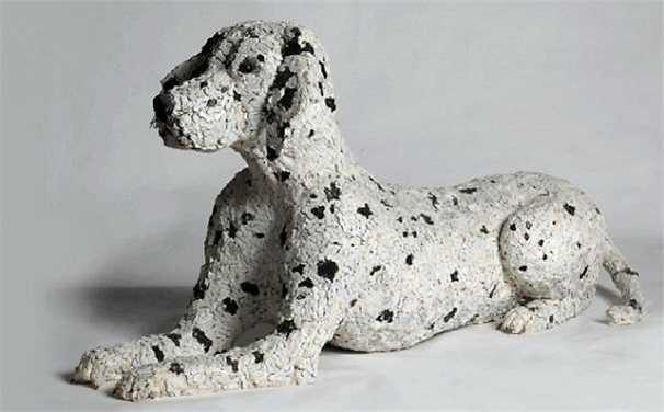 Chó đốm Dalmatian