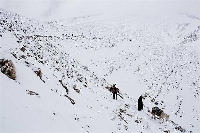 Đàn ông Berber trở về nhà sau khi vận chuyển hàng hóa thực phẩm giữa các làng nơi vùng núi Atlas. Thời tiết khắc nghiệt như: tuyết lở, xói mòn, lũ lụt ... khiến cuộc sống của họ càng cơ cực