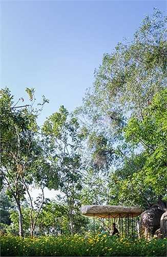 Xung quanh kiến trúc mái đá là cỏ cây hoa lá tươi tốt, tạo không gian tu thiền thanh tịnh.
